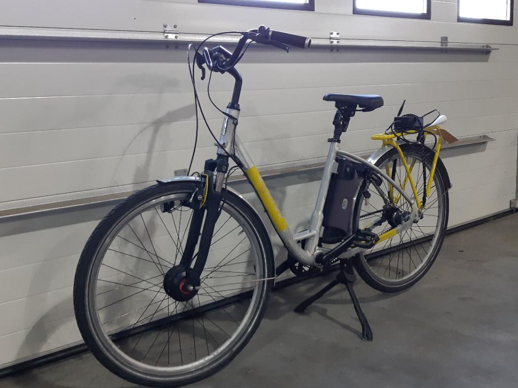 Spiked E-bike Custom RAW